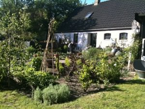 Havehuset set fra haven