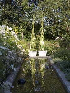 Havehusets spejlbassin